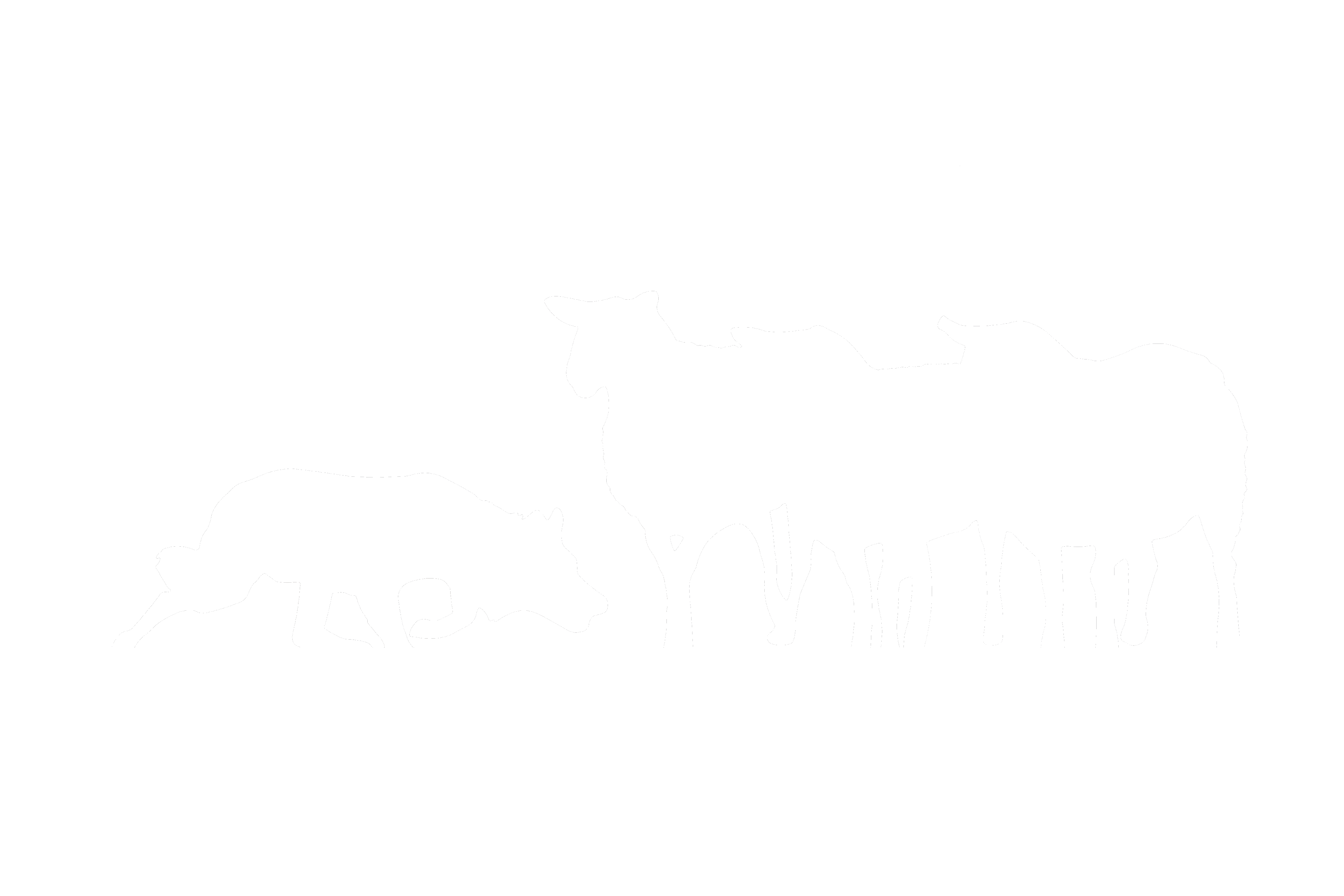 Kennel Adelaine hope